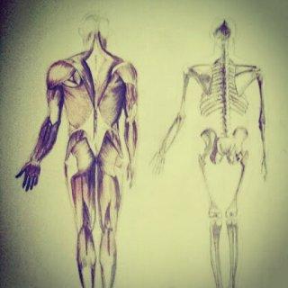 piestukas_zmogaus_anatomija.jpg